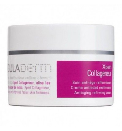 CREMA ANTIEDAD XPERT COLLAGENEUR REAFIRMANTE SINGULADERM 50ml